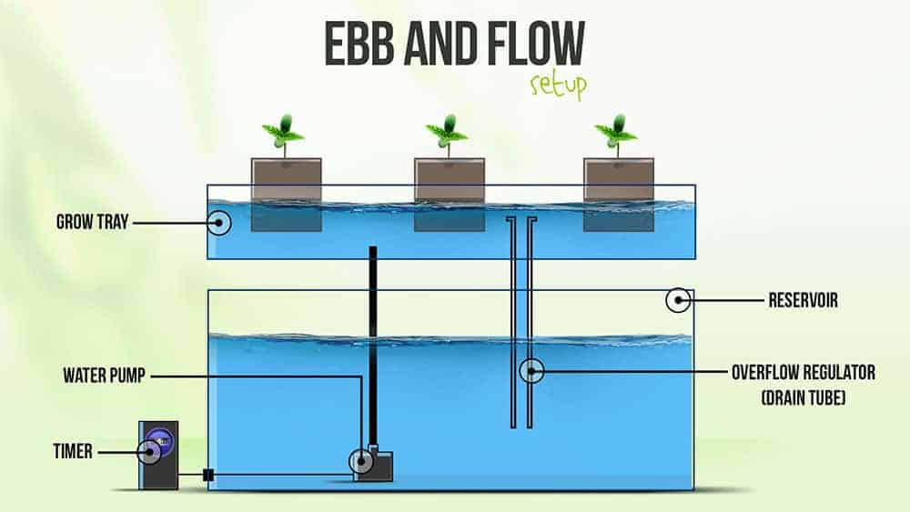 Diagram of Ebb and Flow Hydroponic System
