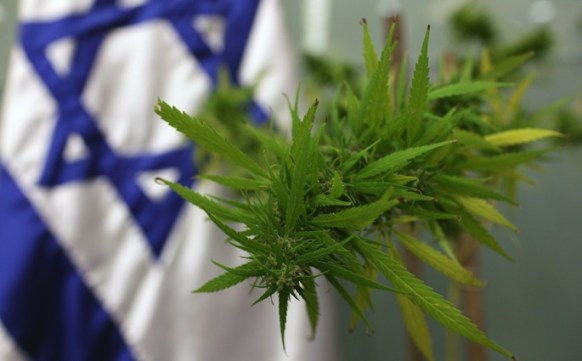 Cannabis Testing at The Hebrew University of Jerusalem, Israel (source)