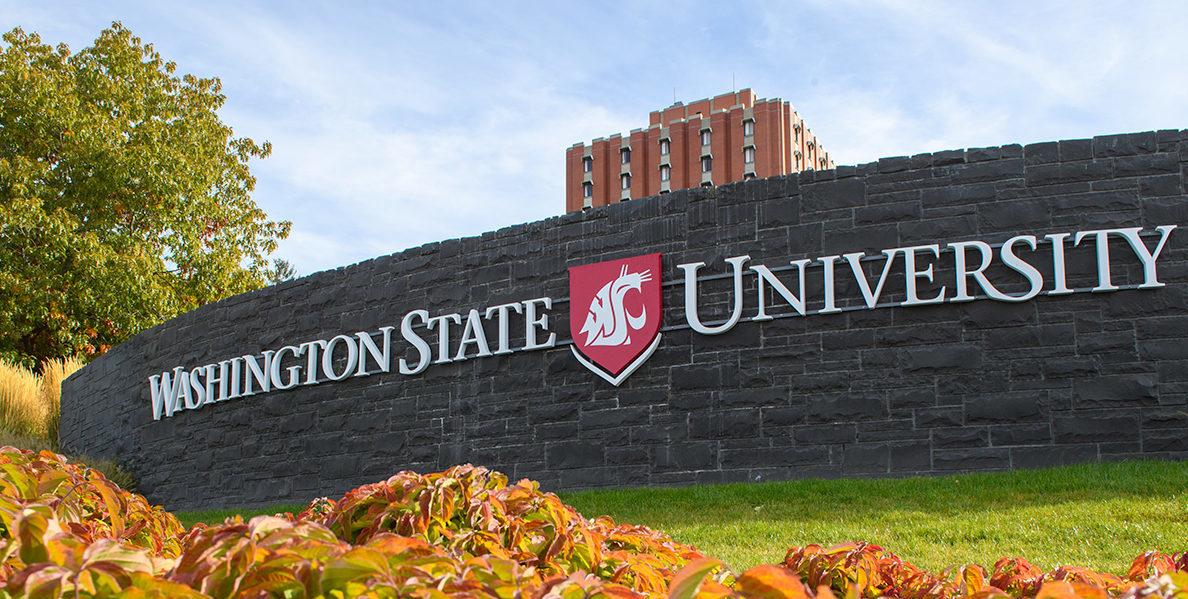 Washington State University - Latest Cannabis News - Cannabiz