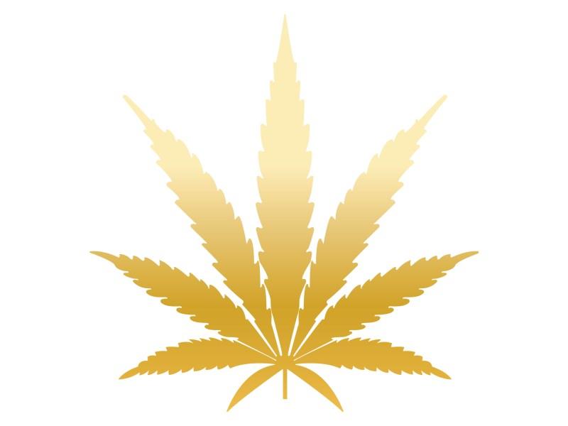 Cannabiz Leaf Gold - Cannabis News Australia