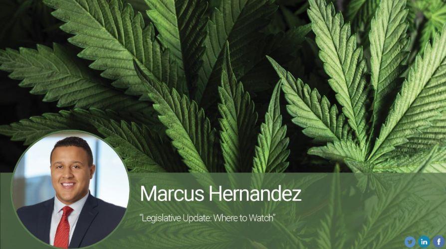 Legislative Update: Where to Watch