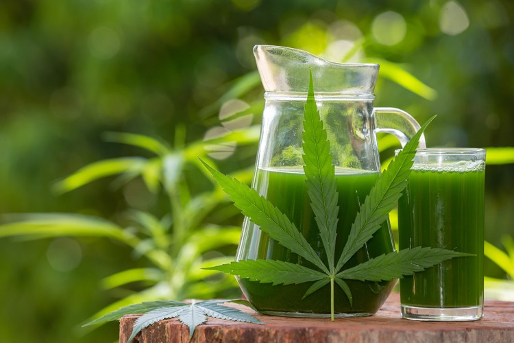 Article: Juicing Cannabis