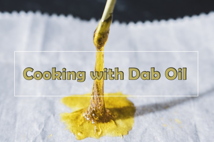 Cooking With Concentrates From CannaCook.com