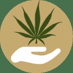 cannabis Massage Movement