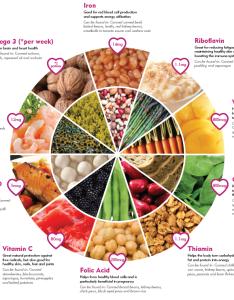 Five basic food groups in nutrition also pie chart rh bondingmiami