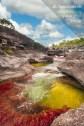 Caño Cristales, sector El Coliseo / Fotografía por Mario Carvajal