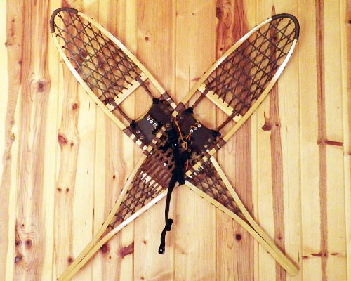 Toad snowshoes