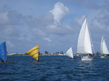 Coconut Cup 2006