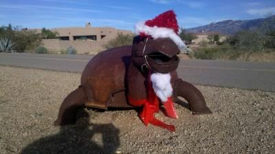 Santa Turtle