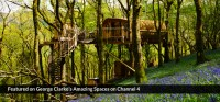 Living Room Treehouses | Canopy & Stars