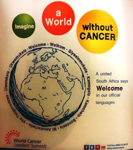 CANSA Hosts World Cancer Leader Summit Nov 2013