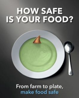 Source: WHO WHD 2015 Food Safety Campaign