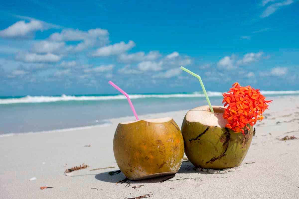 Coconut Water Pros  Cons  Canstar Blue