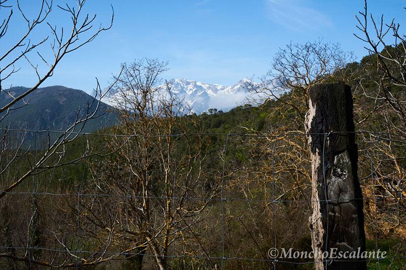 Vista de los Picos de Europa desde el pueblo