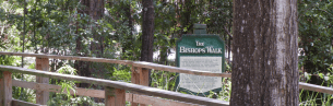 The Bishop's Walk