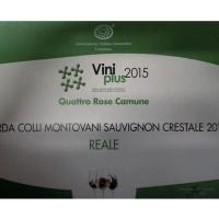 crestale_viniplus15