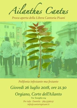 Ailanthus cantus 26-07-2018