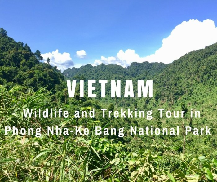 Wildlife trekking tour in Phong Nha-Ke Bang Nationa Park, Vietnam