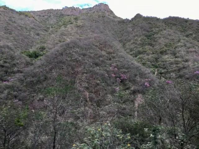 Septentrian Canyon in Copper Canyon, Mexico