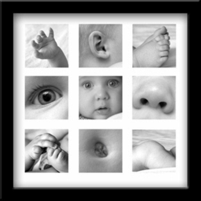 8 baby photo ideas