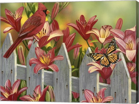 Cardinal and Lilies FineArt Print by William Vanderdasson