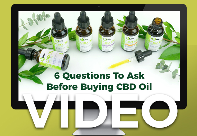 6 Questions To Ask About CBD