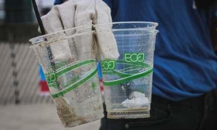 Sostenibilità e Greenwashing