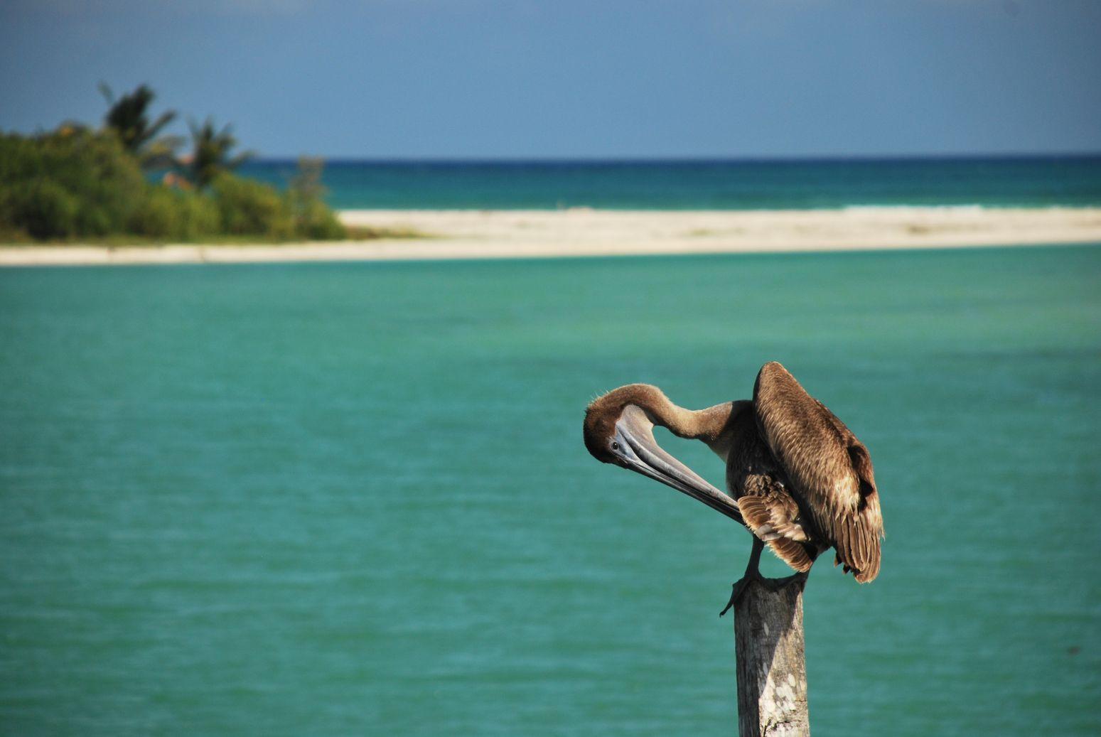 Campeche et Yucatan