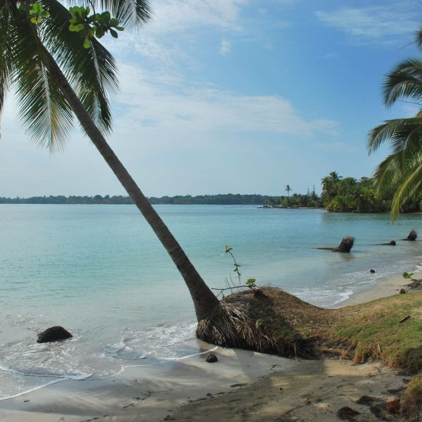 Panama_Boca Del Drago