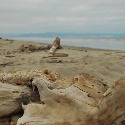 Beach landart