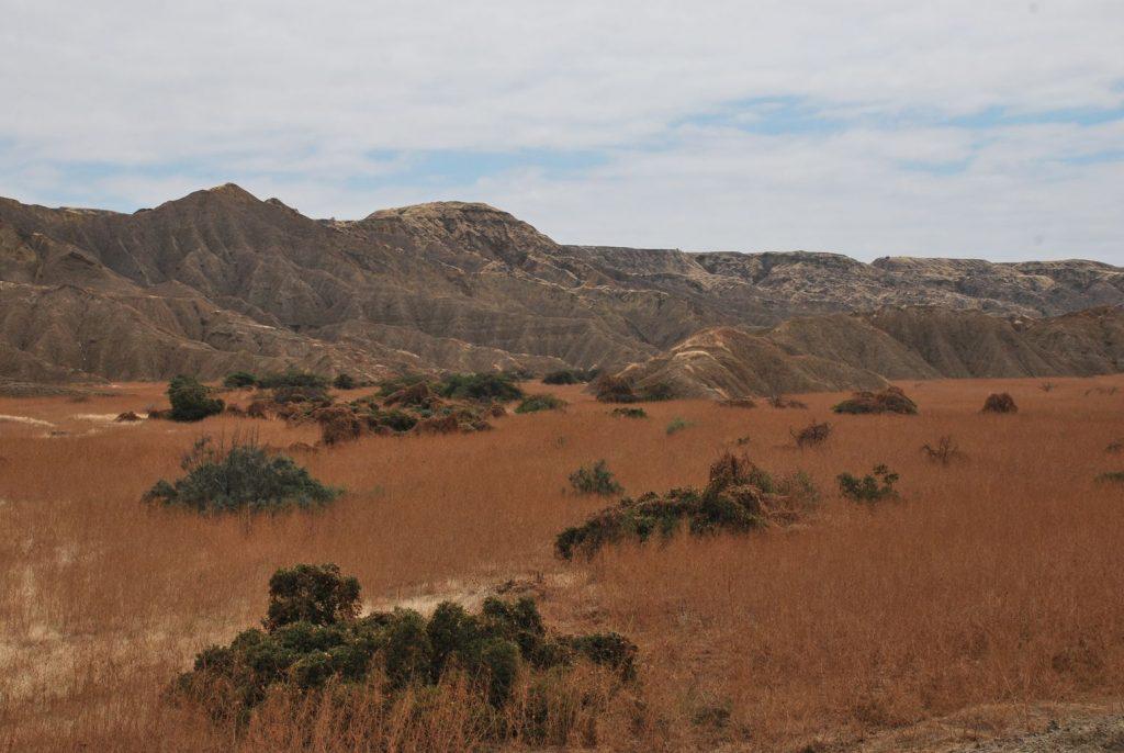 Perou_Desert