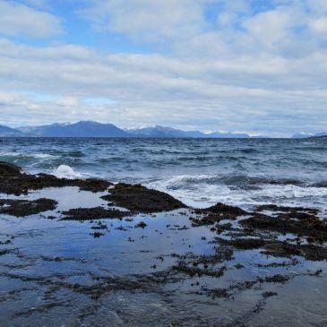 J 394 à 399 : De Puerto Natales à Punta Arenas : Le Sud du nouveau monde