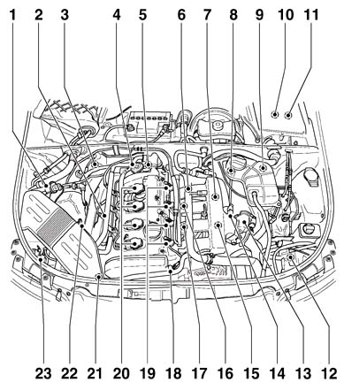 Chevy 350 Freeze Plug Location Chevy 350 Plug Wire Diagram