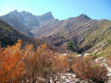 Palmiet River Gorge