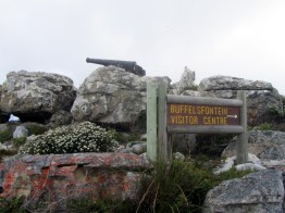 Kanonkop, Cape Point Nature Reserve