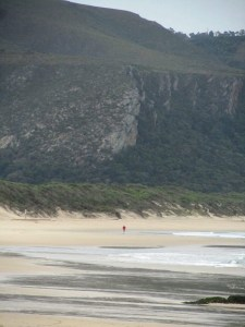 Otter African Trail Run Prologue warm-up on Nature's Valley Beach