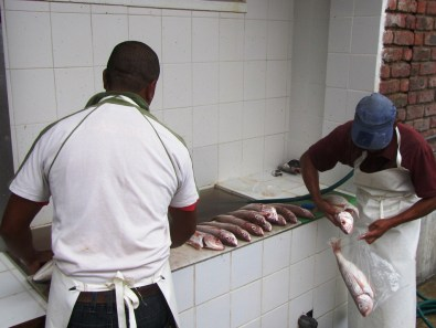 Cleaning fish, Stilbaai Harbour