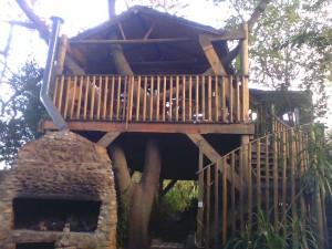 treehouse-exterior
