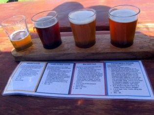 Beer tasting at Saggy Stone Brewery