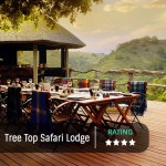 Lailbela Tree Tops Featured Image 500x500