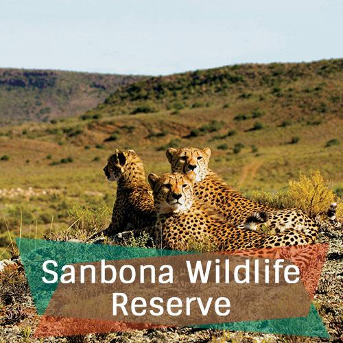 Sanbona Wildlife Reserve Featured Image New