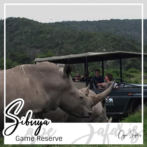 Sibuya Game Reserve Fetured Image 2019