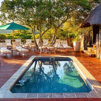 Tree Top Safari Lodge Pool Area