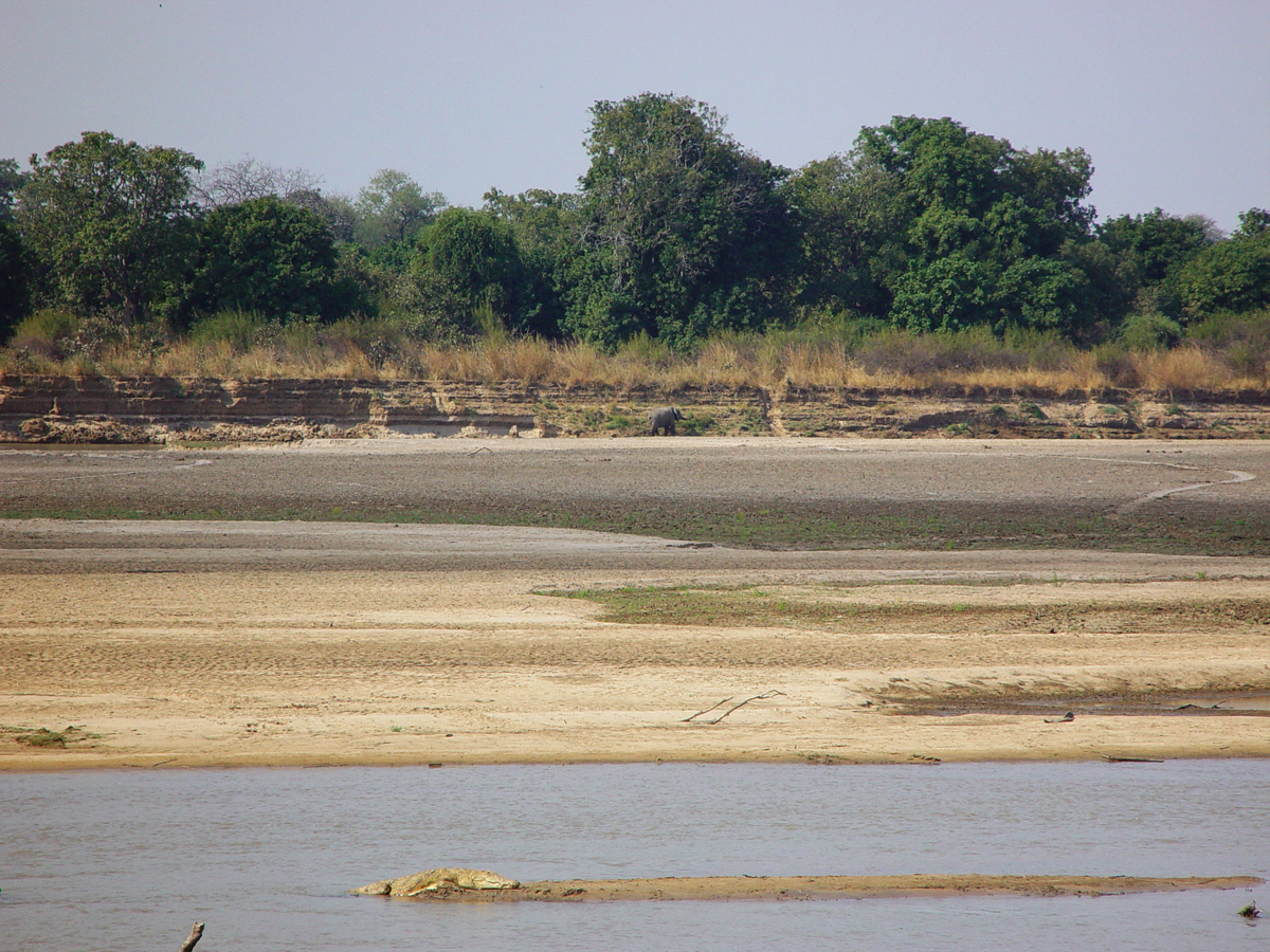 South Luangwa National Park river // Zambia