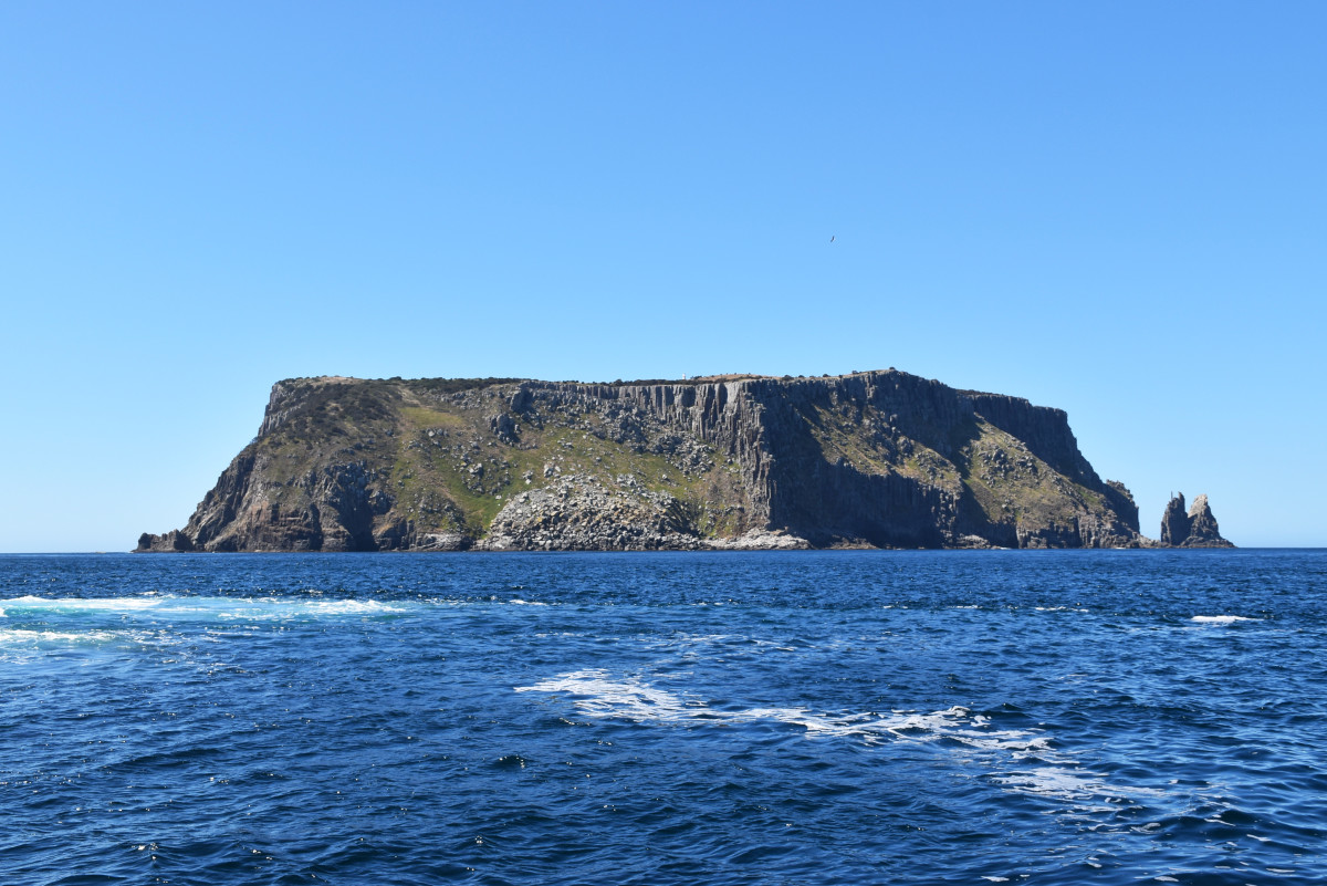 Australia Pennicott Tasman Island Boat Trip.