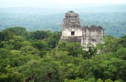 Guatemala Tikal National Park