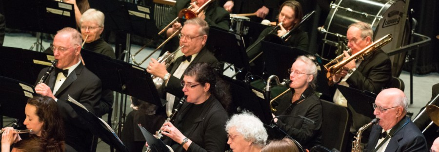 Wind and brass players perform in concert