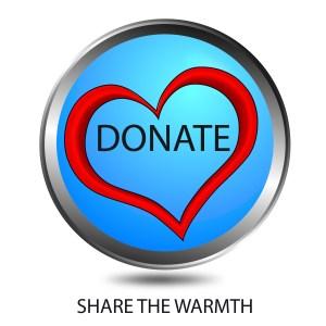 Donate to CapeIvy.com button