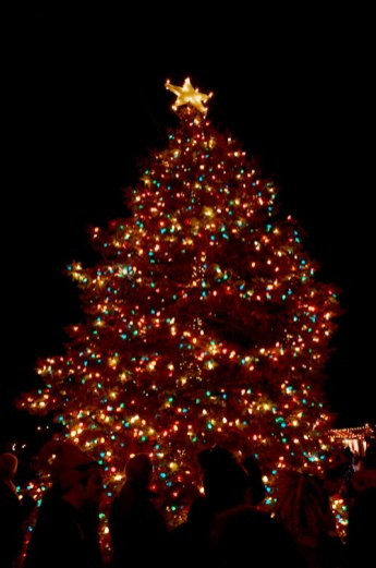 congress hall tree lighting holiday concert capemay
