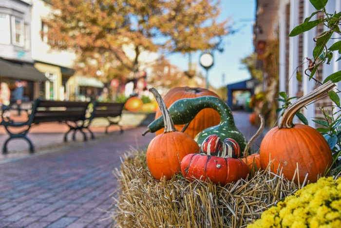 Fall decor on the Washington Street Mall